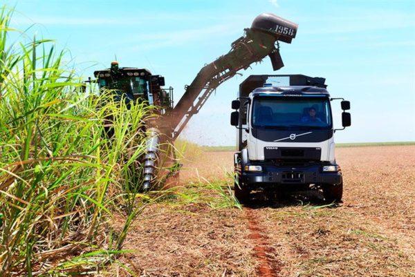 Грузовик Volvo с автопилотом для сбора сахарного тростника